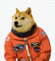 Používateľov profilový obrázok